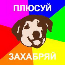 advice dog средствами css